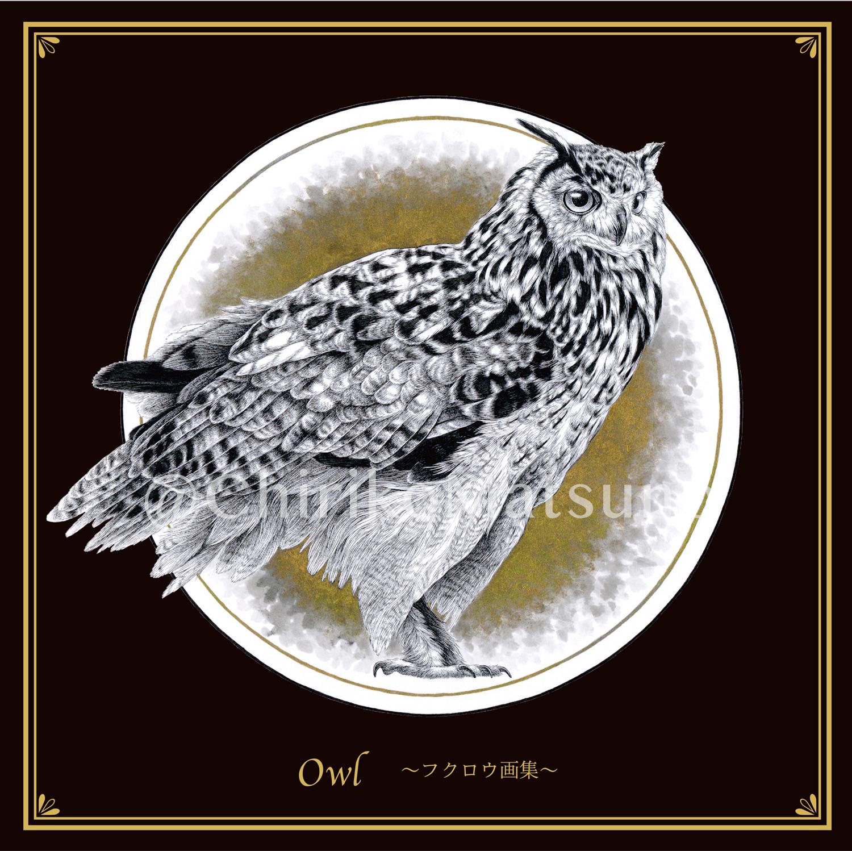 owl_pr06.jpg
