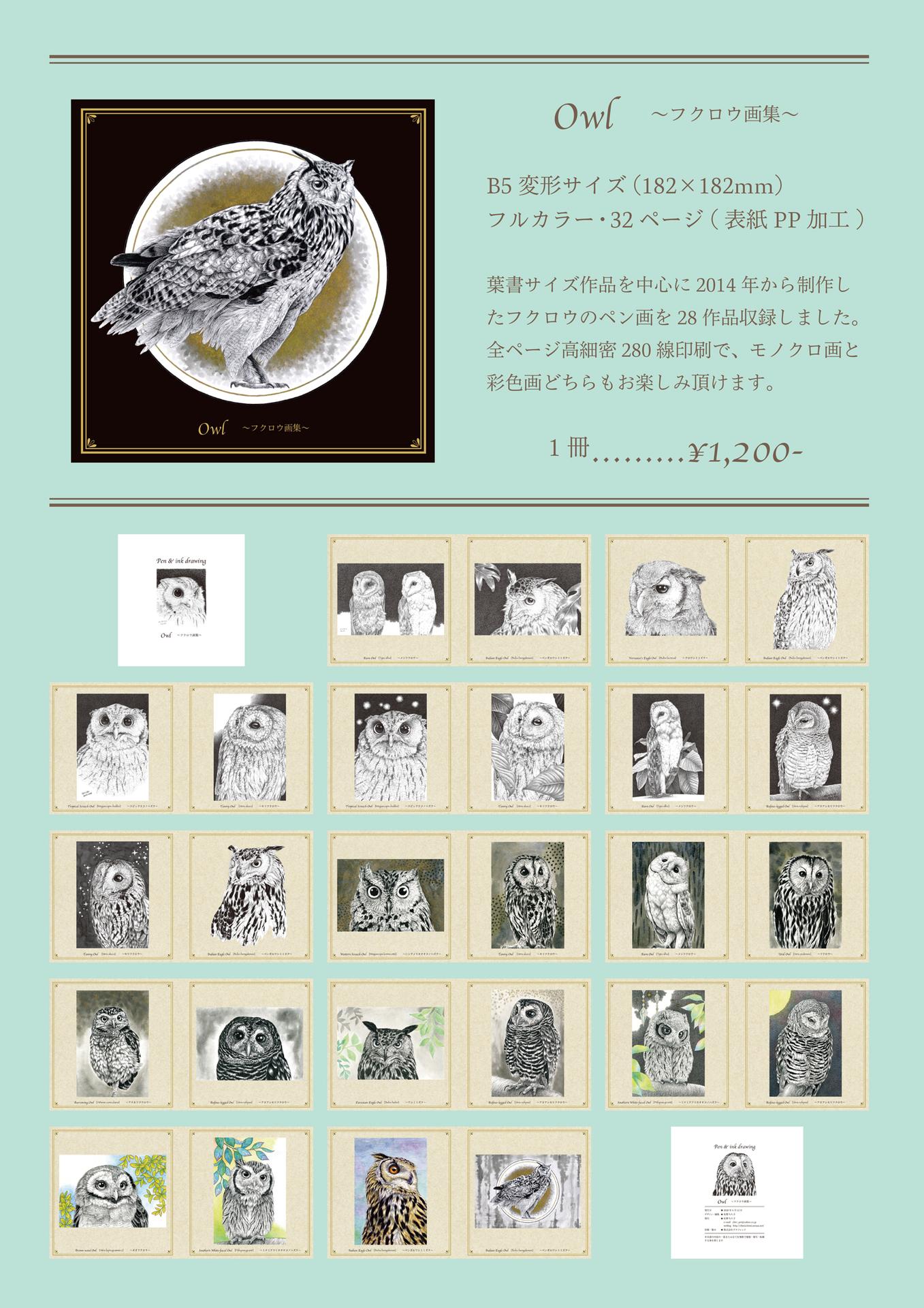 owlbook_pr01s.jpg